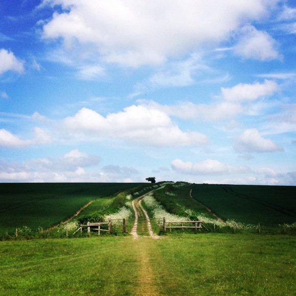 A sunny day on the South Downs
